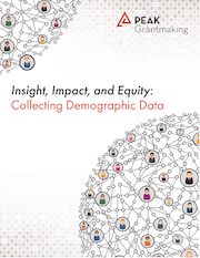 Insight, Impact, and Equity: Collecting Demographic Data